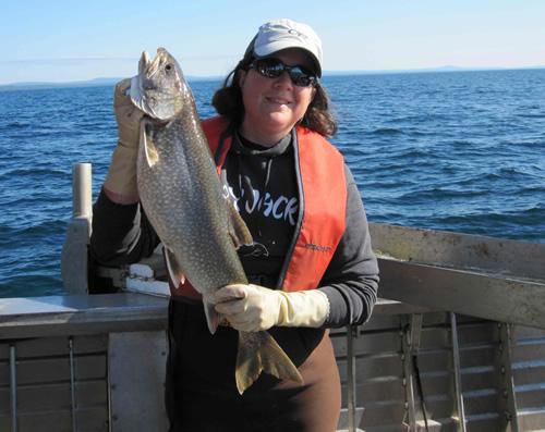 Contaminants for Lake superior fish